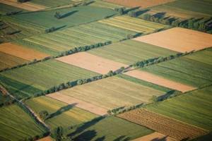 agrotikes-ektaseis