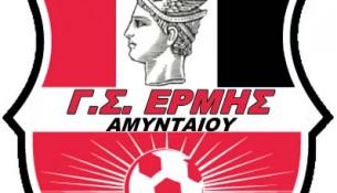 ermis_logo_new